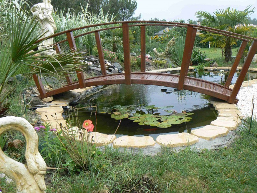 Fans de bassins et jardins for Grand bassin poisson exterieur