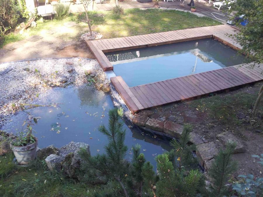 Fans de bassins et jardins for Construire petite piscine