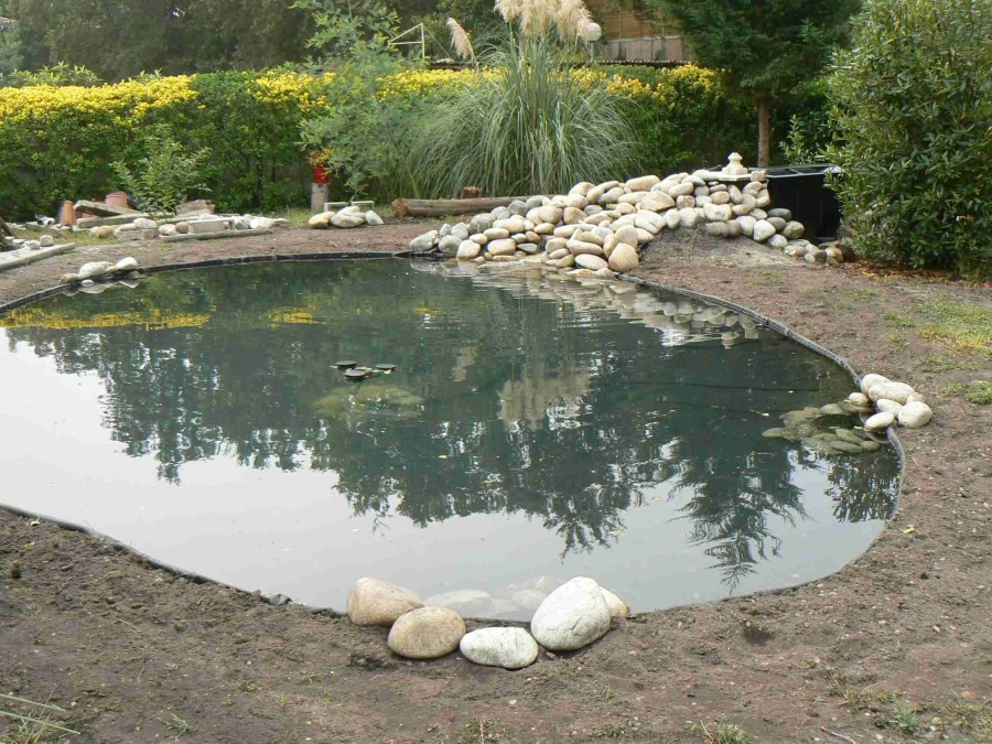 Piscine naturelle 42 for Piscine 42